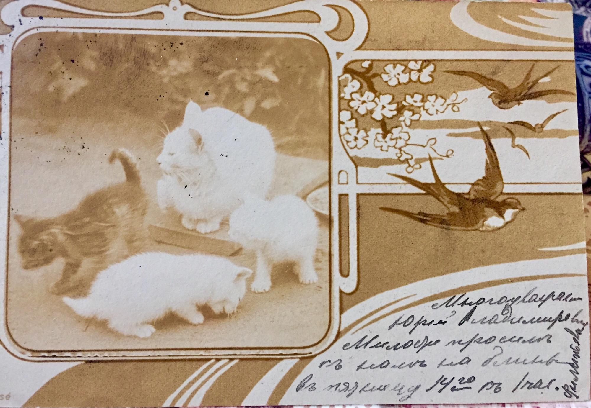 Текст открытки в маленьком уголке.
