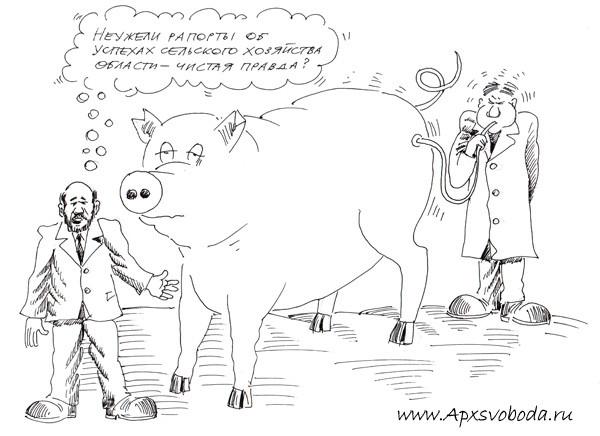 дутая свинья
