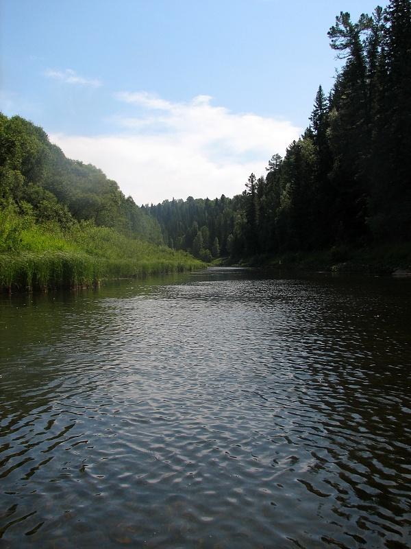 золотой китат кемеровская область рыбалка