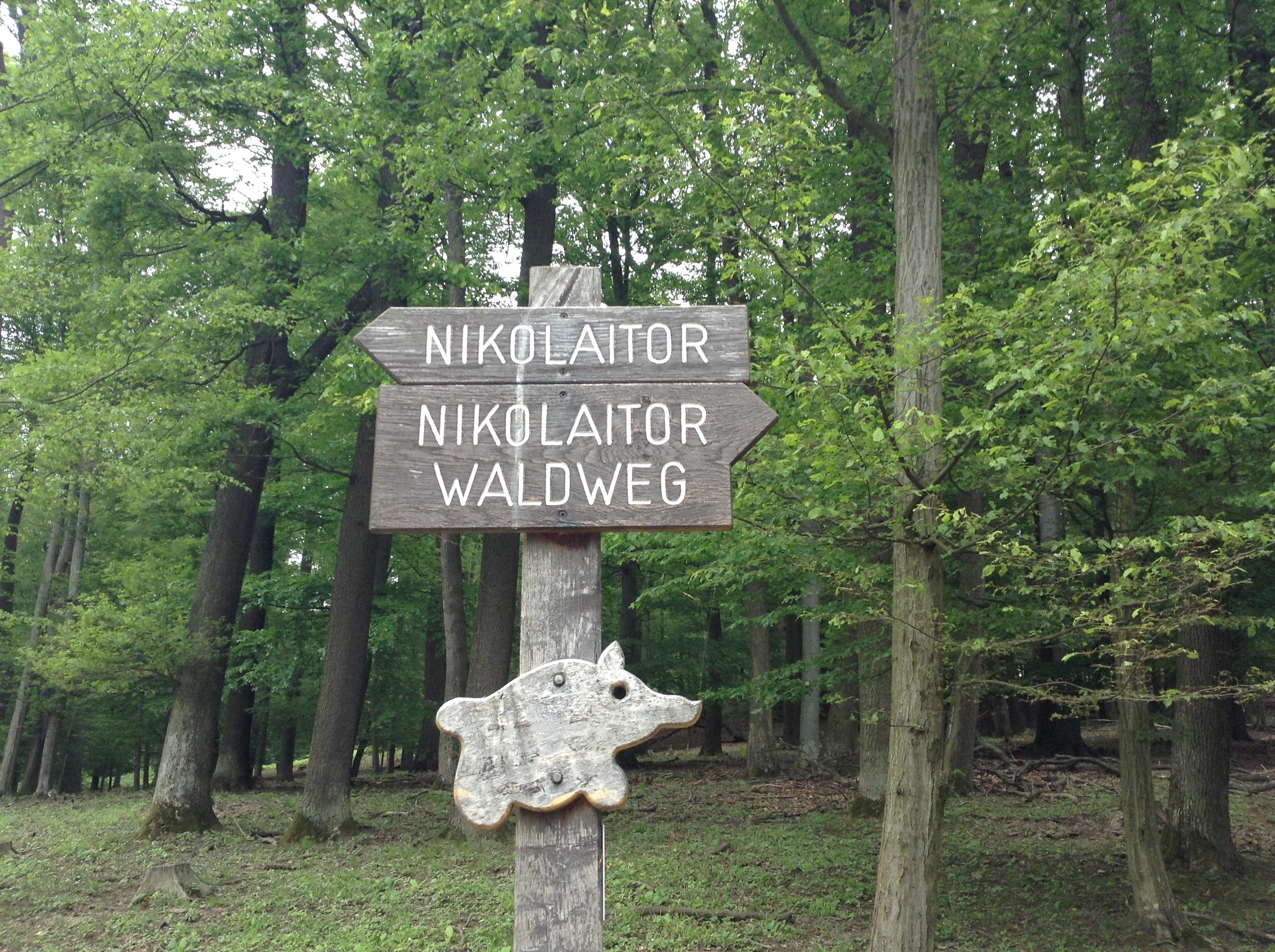 Гуляла в лесу и поимели