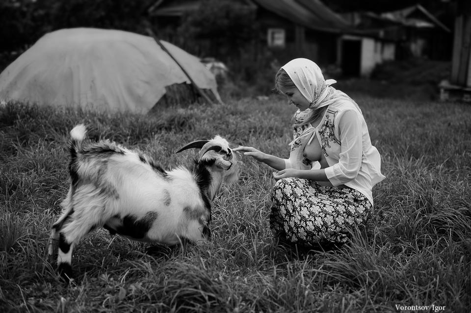 20150906-Год Овцы-Козы.jpg