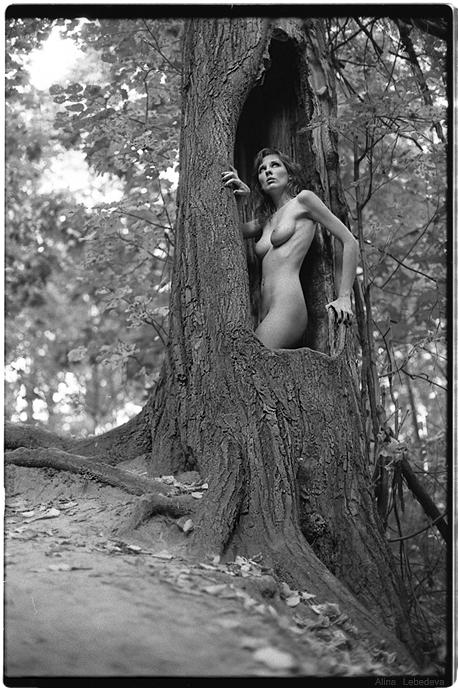 gadinagod_girls_naked_tree_03
