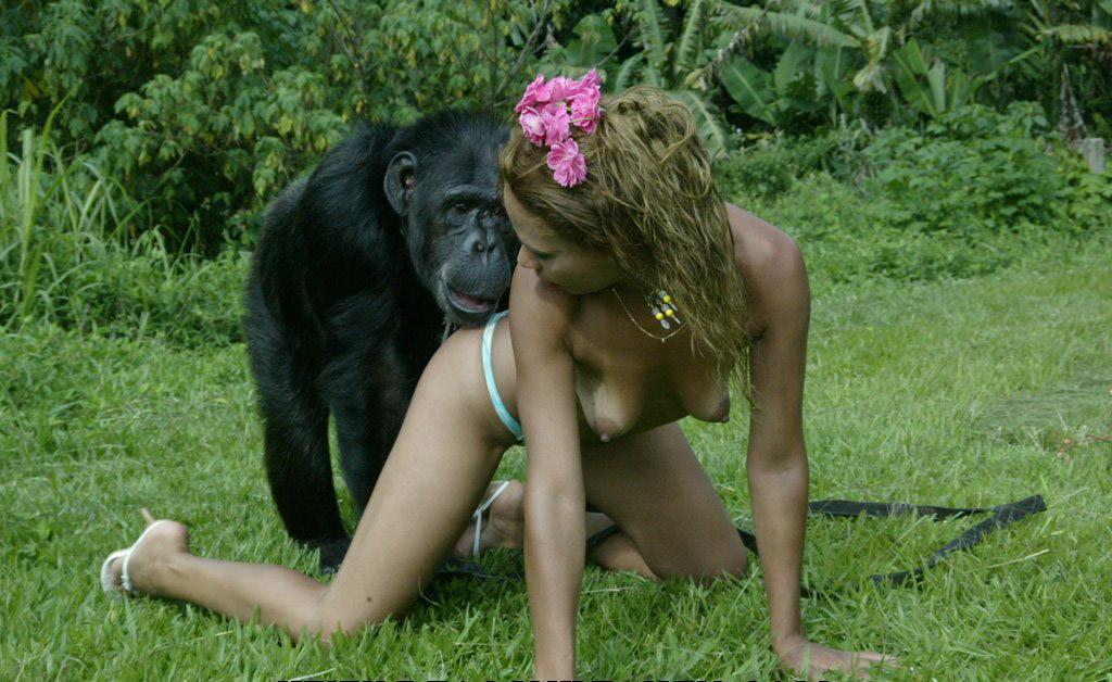 Порно секс приматов видео онлайн