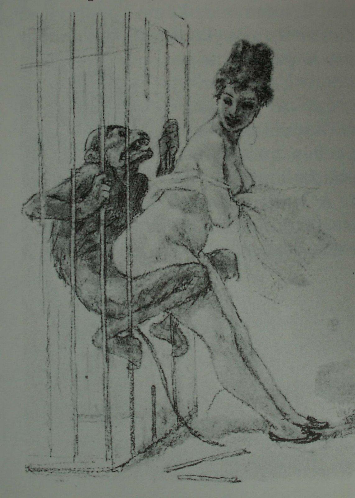 Смотреть порно картинки с обезьяной 20 фотография