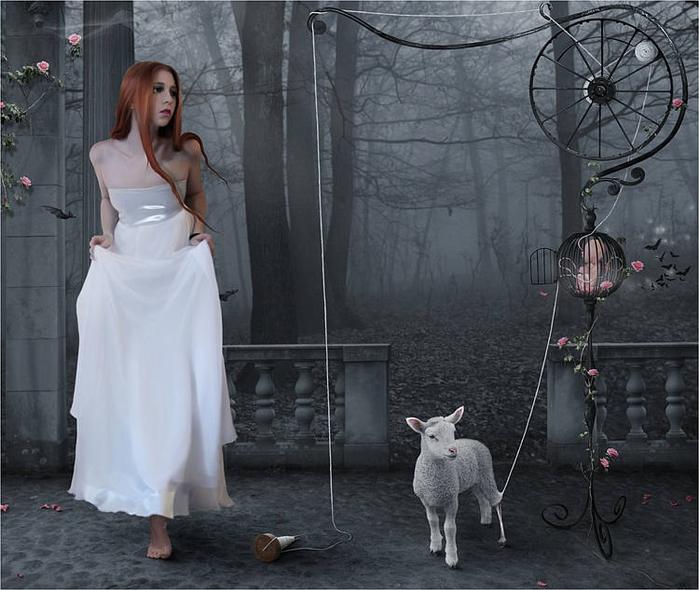20150306-Год Овцы-Козы