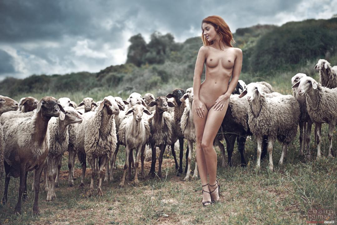 20150413-Год Овцы-Козы