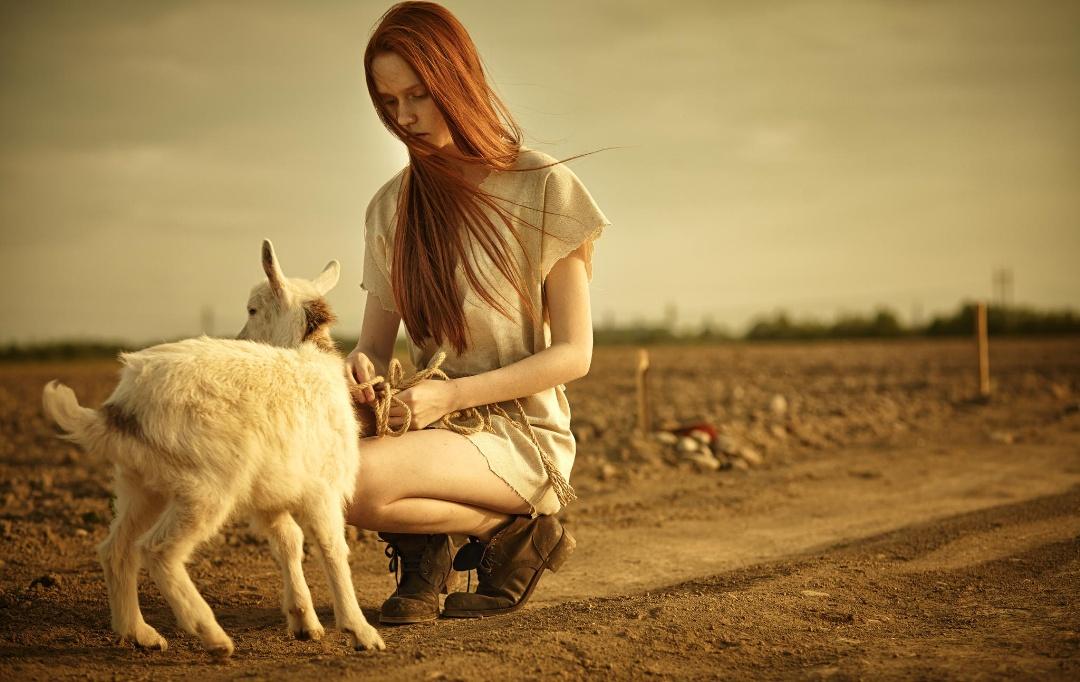 20150505-Год Овцы-Козы.jpg