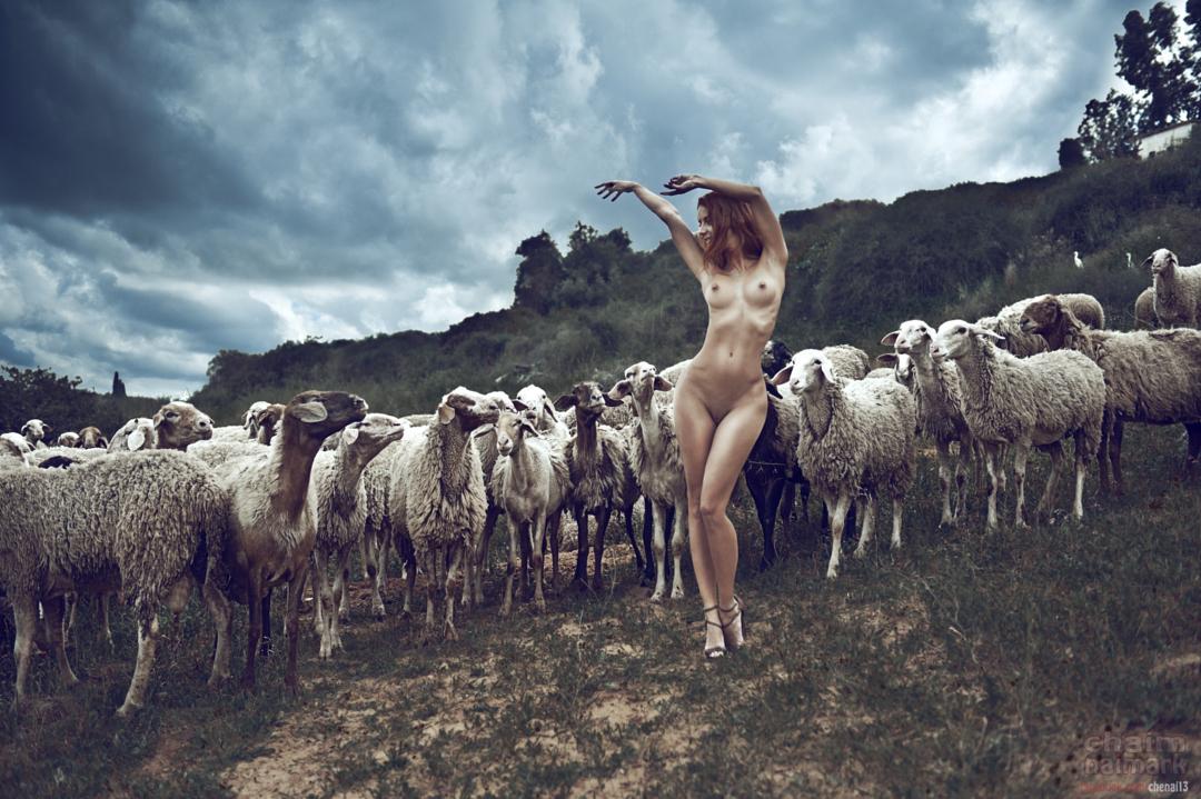 20150722-Год Овцы-Козы.jpg