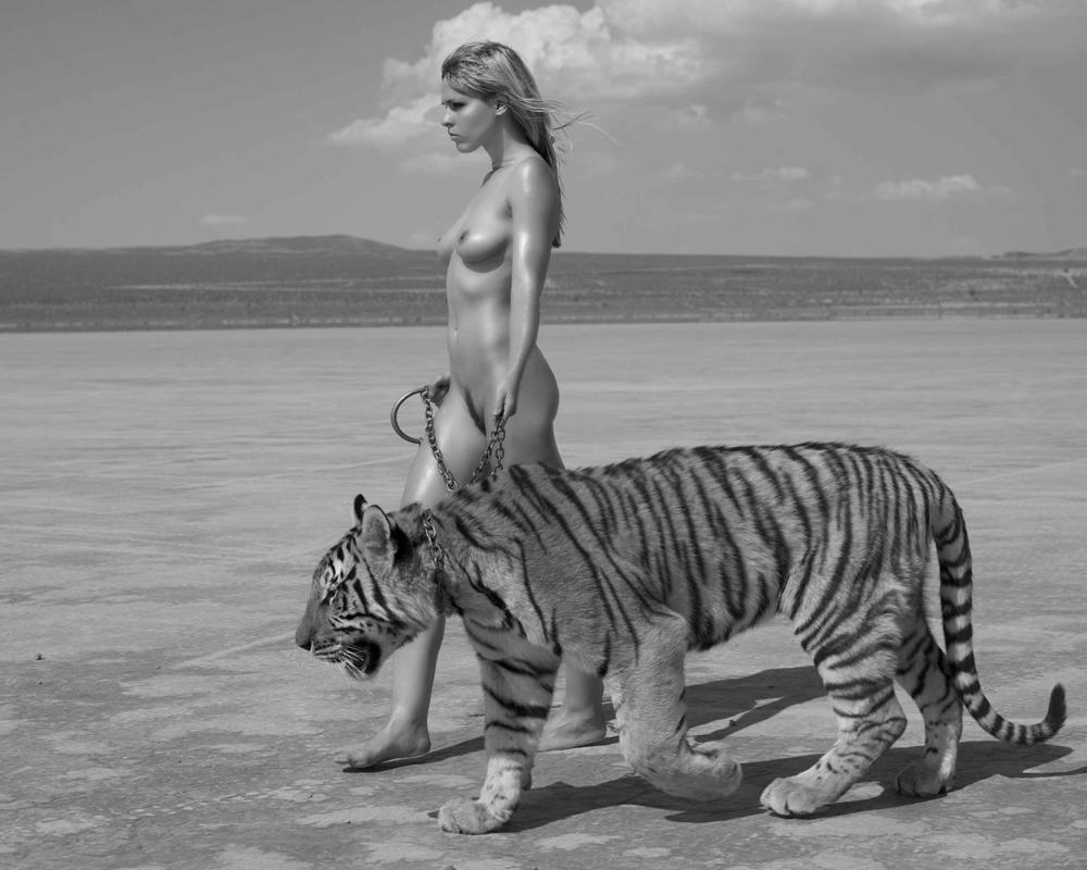 29 июля - Международный день тигра.jpg
