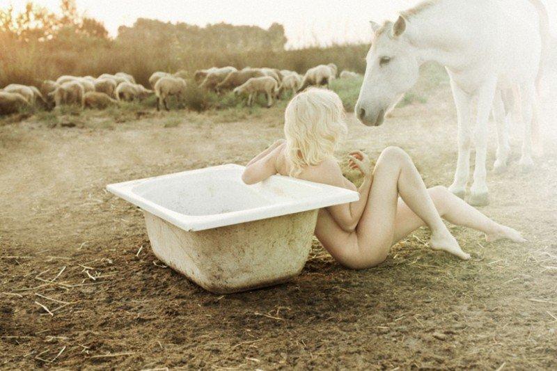 20150809-Год Овцы-Козы.jpg