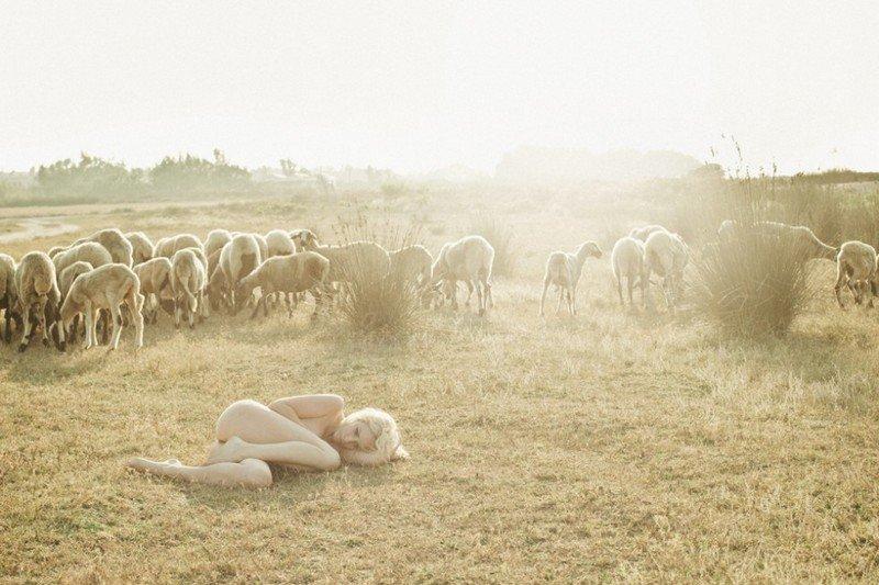 20150816-Год Овцы-Козы.jpg