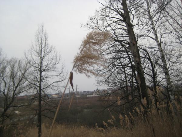 АПРЕЛЬ-16 года 057