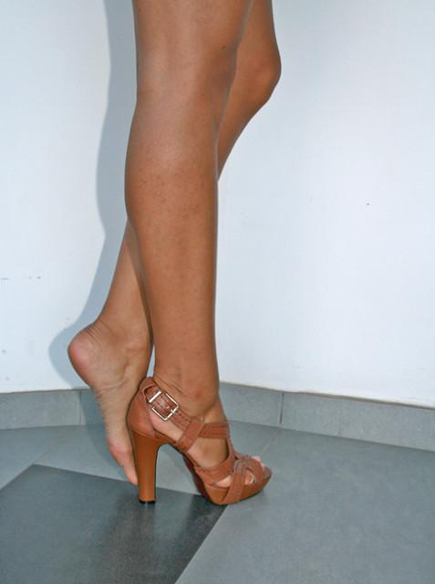 miu miu legs