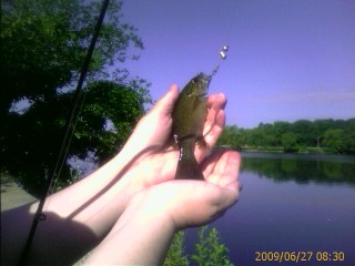 First catch of the day: a small small-mouth