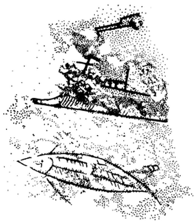 fibula-ram1.jpg