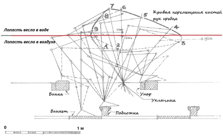 Диаграмма загребного.jpg