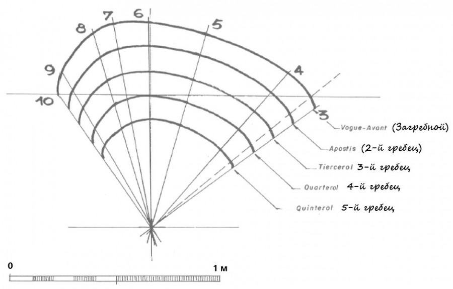 Диаграмма гребцов.jpg