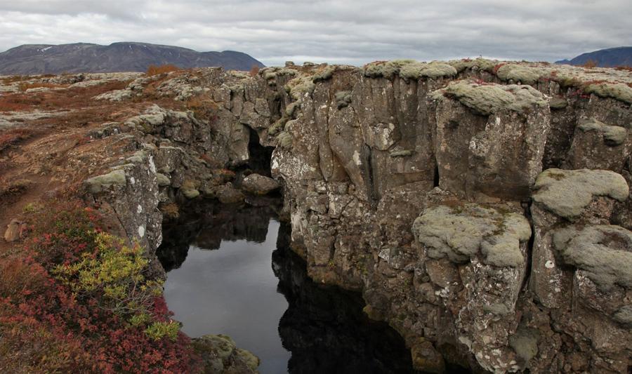 7 разлом Срединно-Атлантического хребта