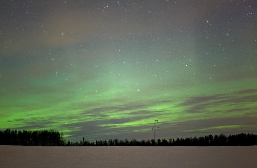 11 aurora17.03.2013-7