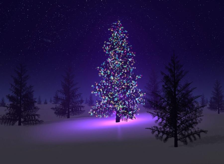Christmas1 - копия