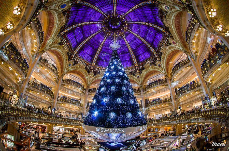 16 Lafayette Christmas tree
