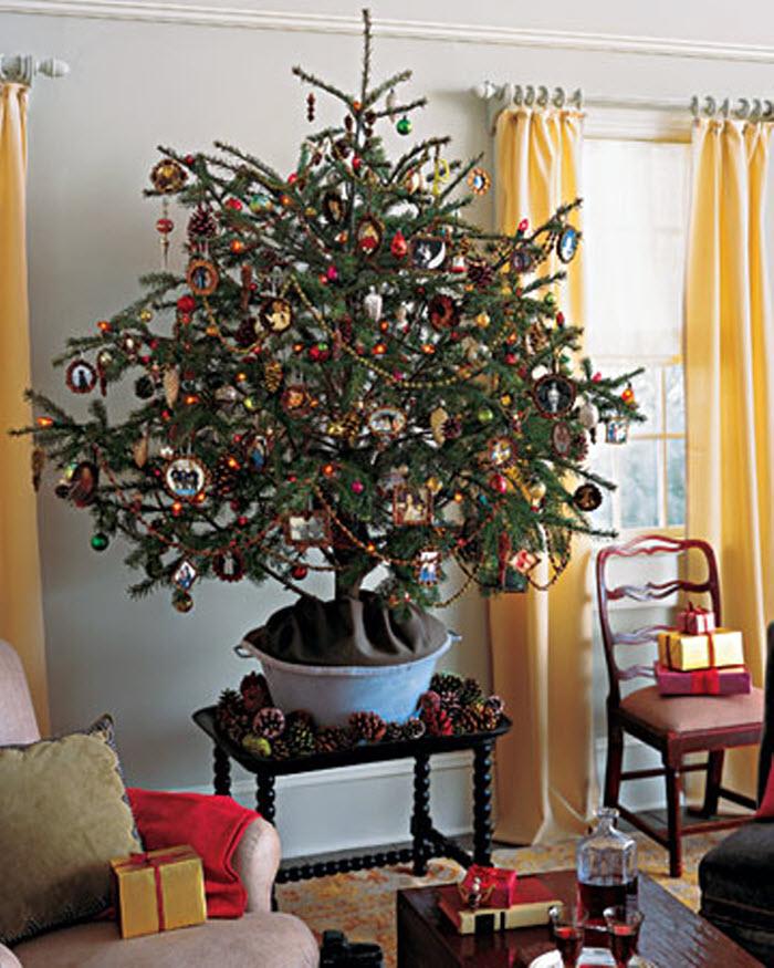 10 лесная  елка  с шишками