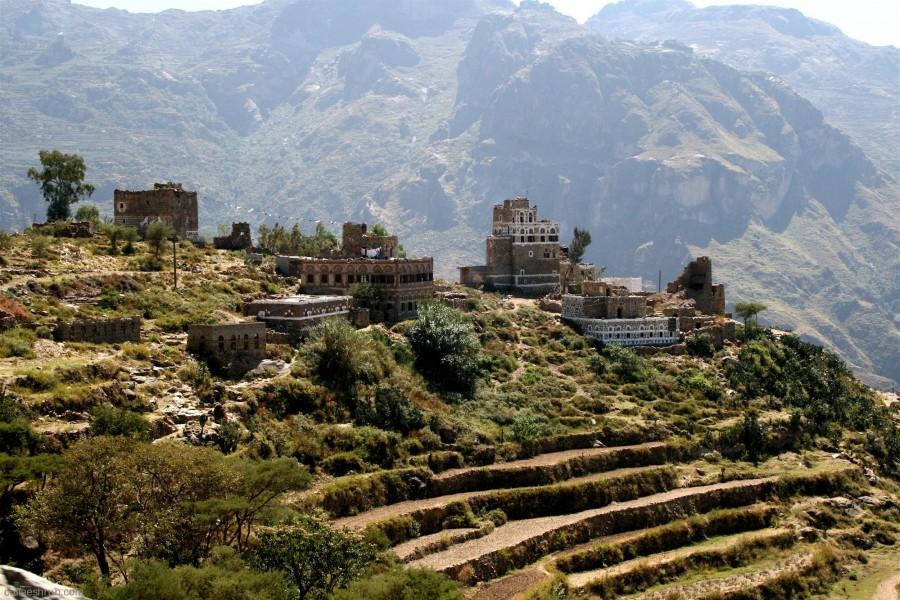 20 Yemen Mokha Harasi.