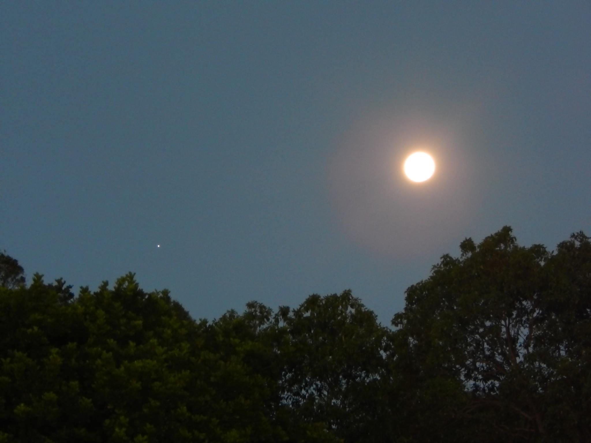 1 Луна  и Юпитер 16 01 2014 Австралия