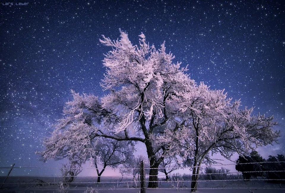 Звезды  и  снег