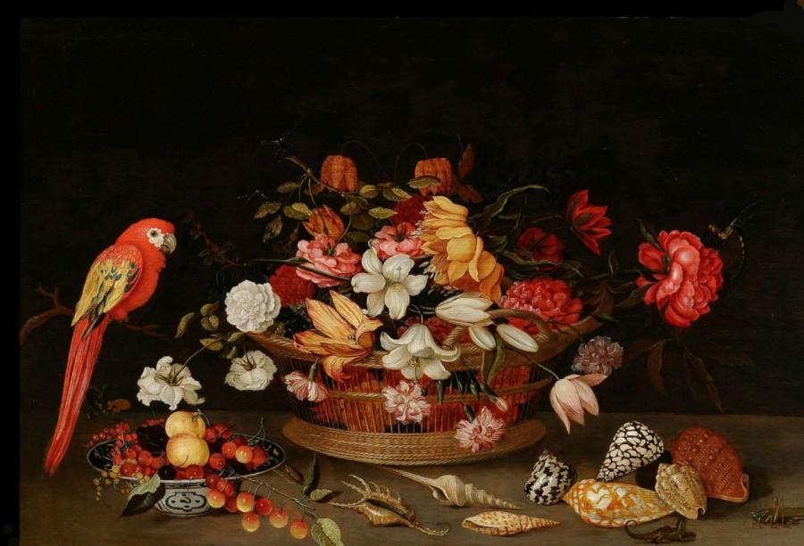 Jeronimus Sweerts  Натюрморт  с  попугаем