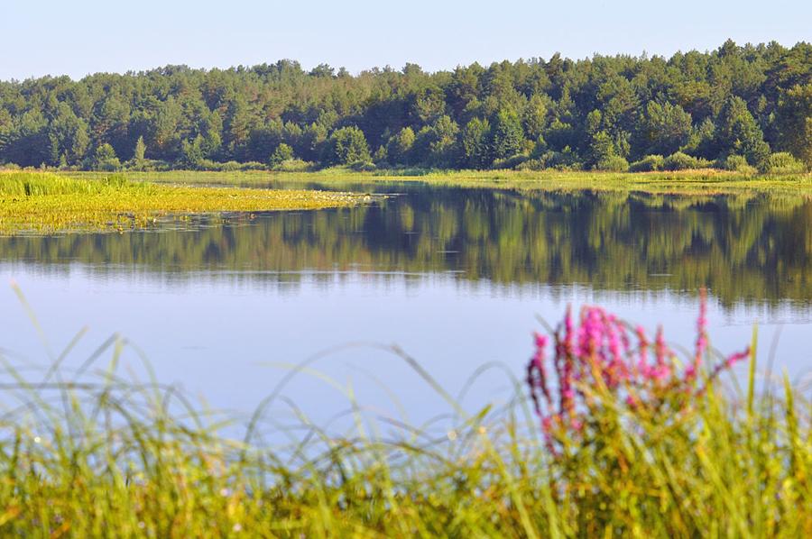 9 Озеро  Литвин