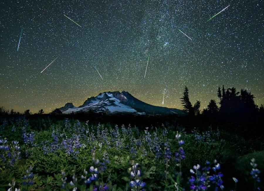 4 The Perseid meteor showe