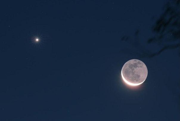 пепельный  свет  Луны.jpg