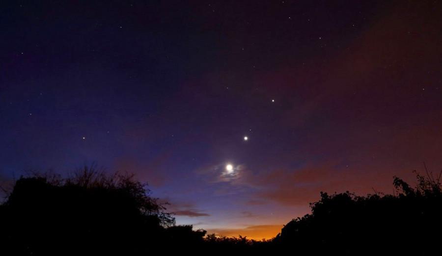 1 Moon Venus Mars Jupiter Regulus.JPG