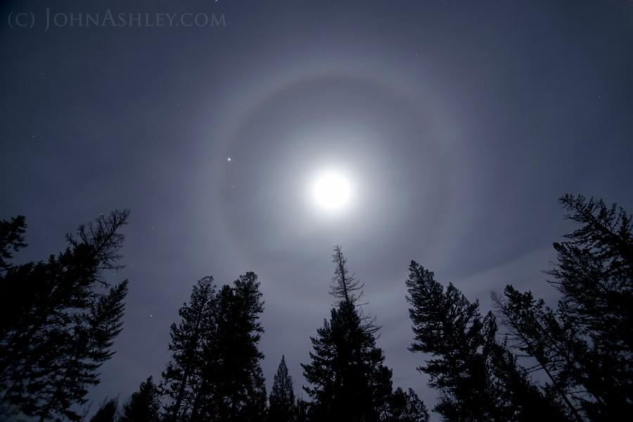 moon halo.jpg