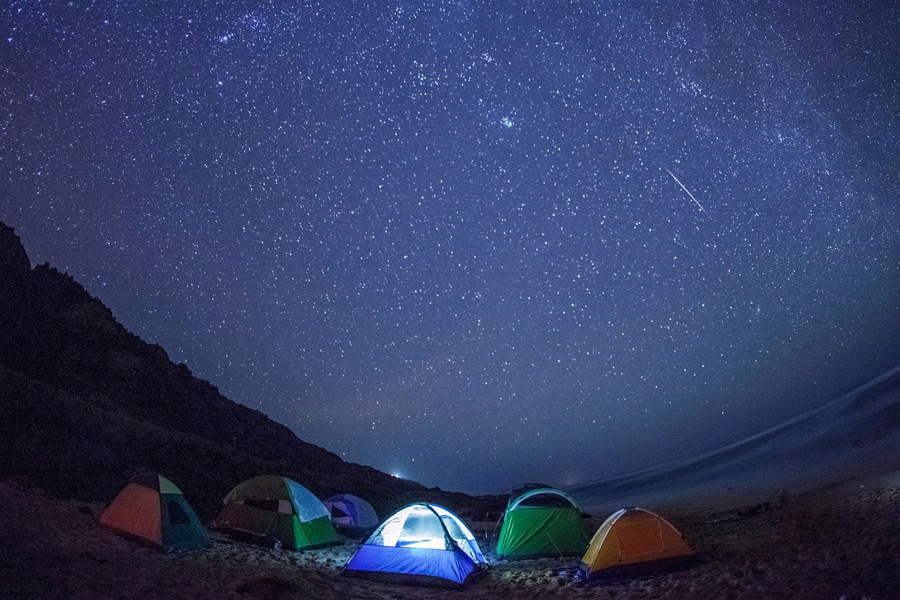 4 Geminid Meteor Shower Kaena.jpg