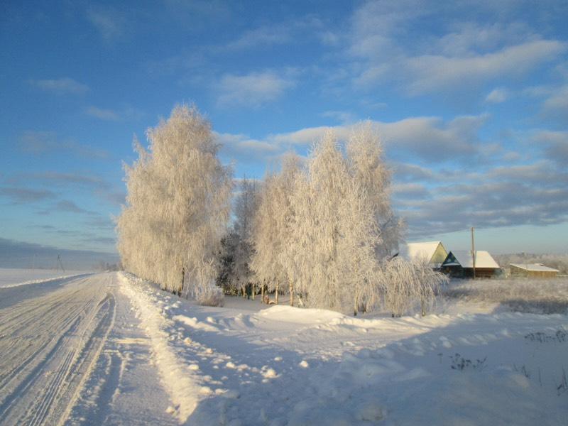 Зима снежная.jpg