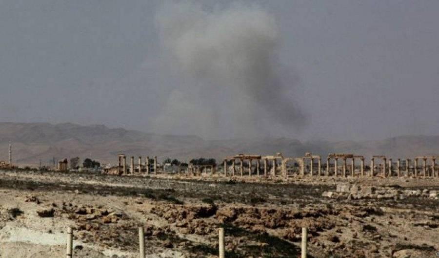 11 Palmyra.jpg