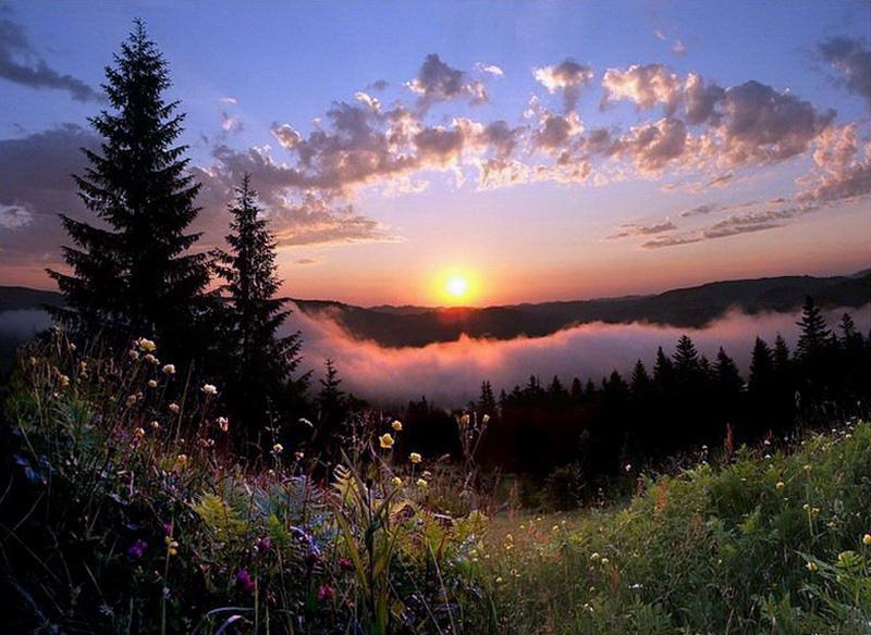 Закаты, рассветы.jpg