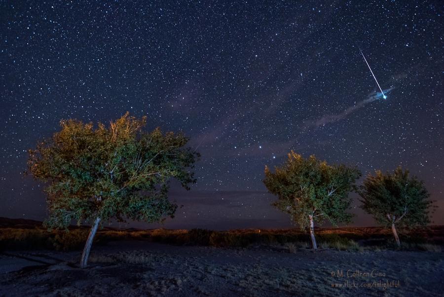 M.-Colleen-Gino- Polvadera, New Mexico.jpg