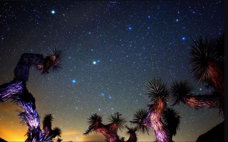 3 Spring Constellations over Josha Trees.JPG