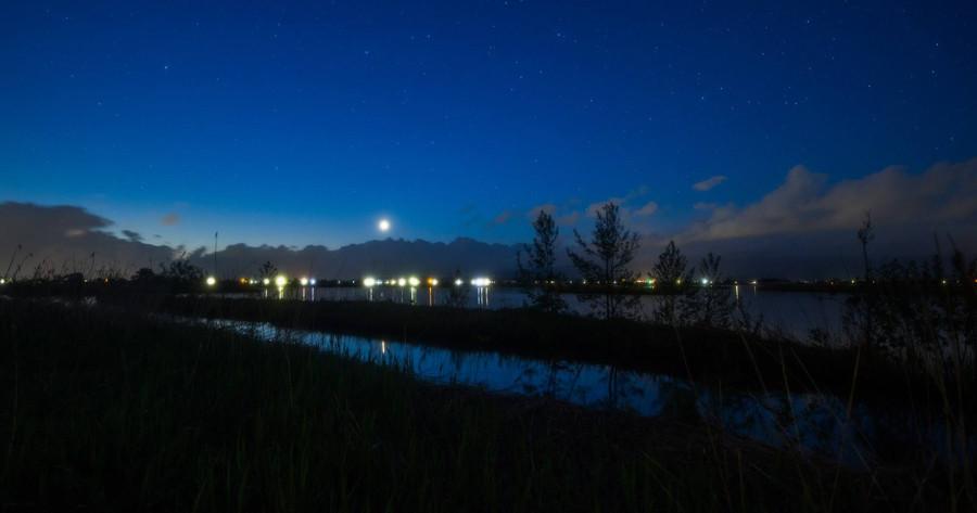 Венера над восточным  горизонтом Shigemi Numazawa..jpg