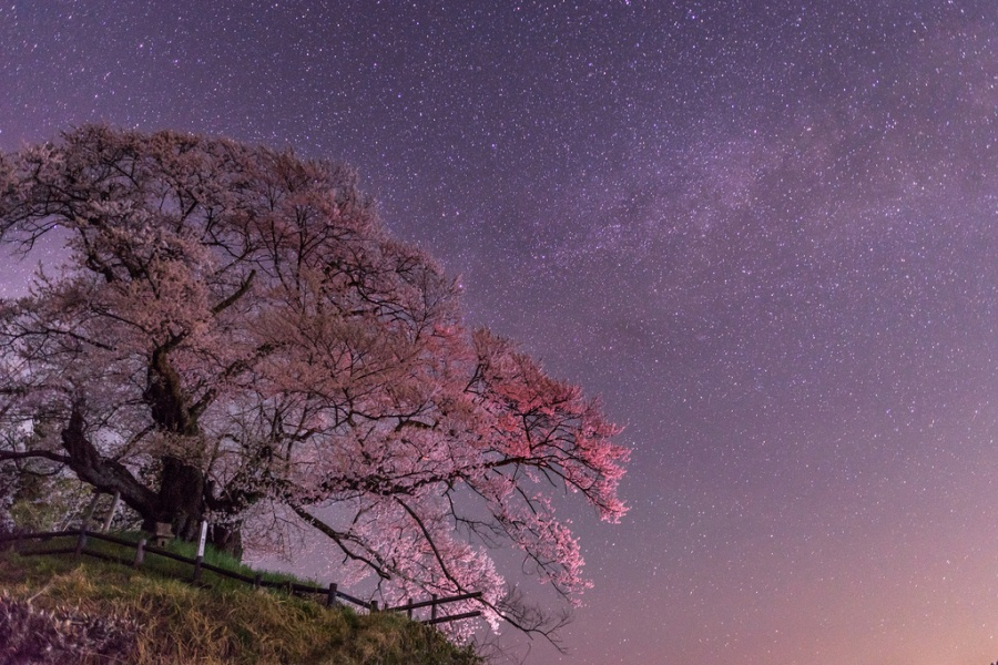 1 Весеннее  ночное  небо.jpg