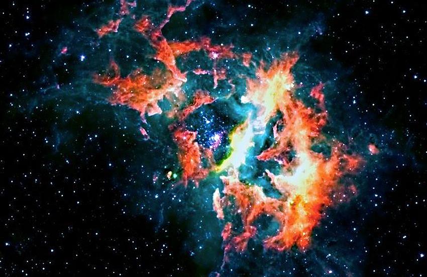 Звездные  ясли