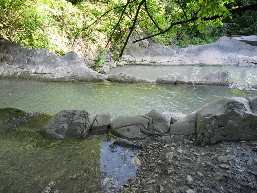 Большая  чаша  на  реке  Жане