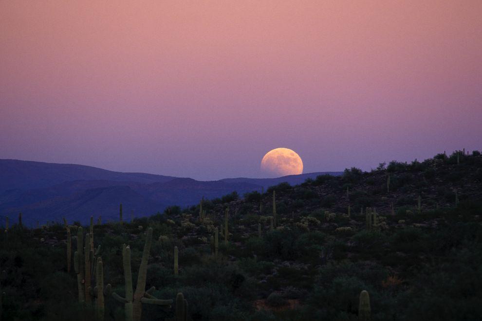 october-2013-partial-lunar-eclipse