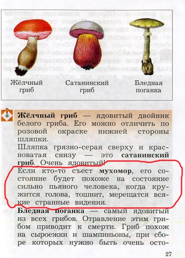 Mukhomor0001