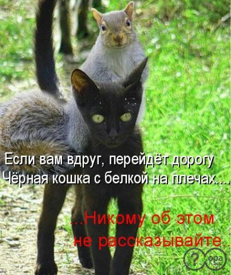 1323752010_1047179