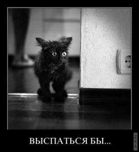 1317368055_demotivatory_16