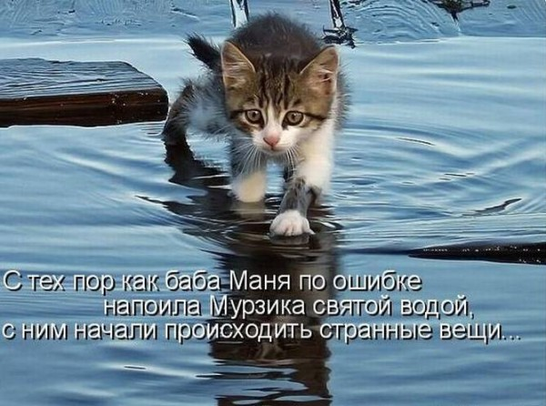 1370932604_www.radionetplus.ru-28